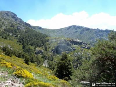 Canal Barranca_Cuerda Cabrillas;grupo de amigos madrid sendas verdes de madrid castillo jadraque